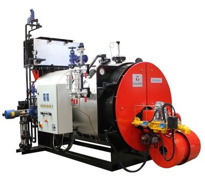 Geoff Castles Boiler Services Ltd   Borderer Steam Boiler